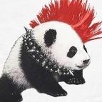 Panda secours